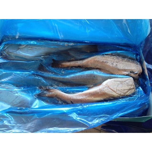 Минтай потрошенный без головы (25см +) РЫБХОЛКАМ, Камчатка, 1 кг