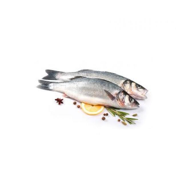 Сибас (300-400 гр.), неразделанный, Турция, 1 кг