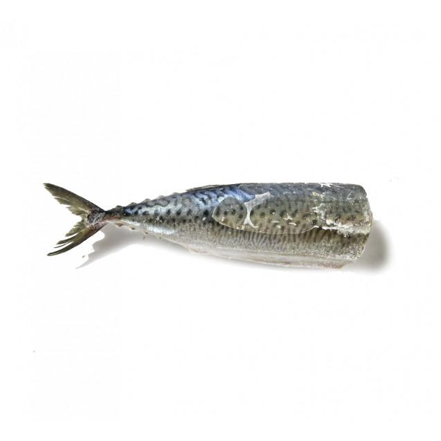Скумбрия без головы (650-850 гр.), изготовлена в море, Новая Зеландия, 1кг